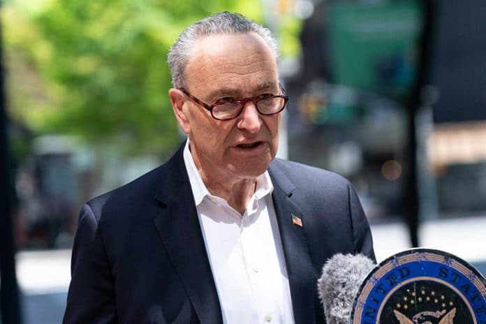 Schumer Prepares Backup Plan to Give Millions Citizenship